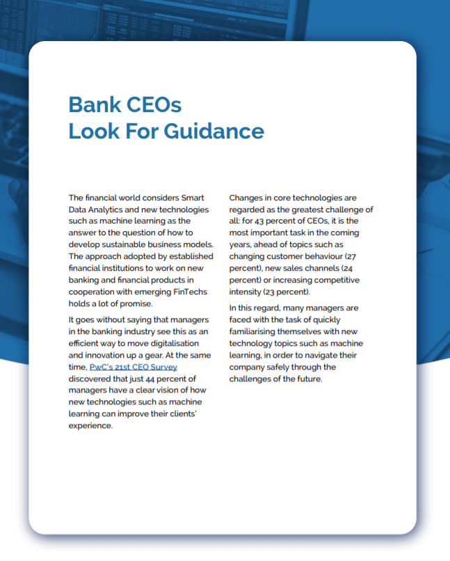 Guidance for Bank CEOs
